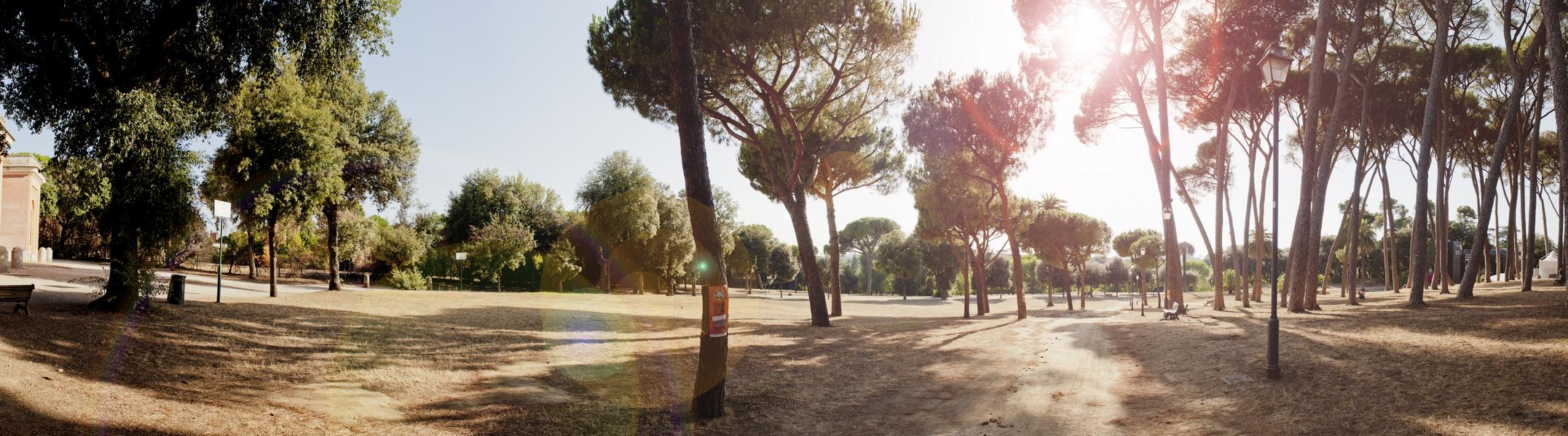 Fotografia in Roma - Panorama in Villa Doria Pamphili - Michele Settembre