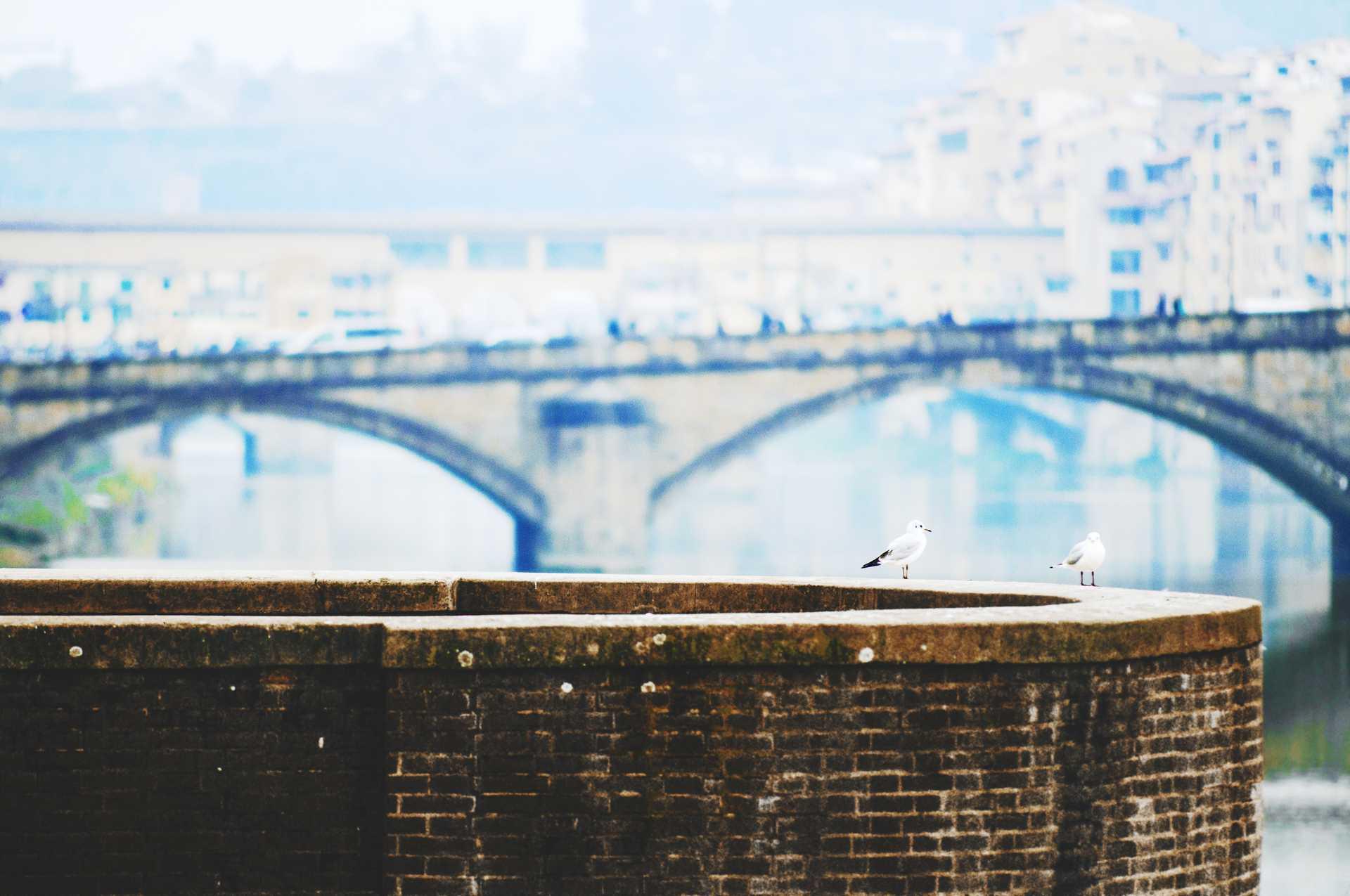 Michele Settembre - Fotografia in Firenze - Alba sui ponti
