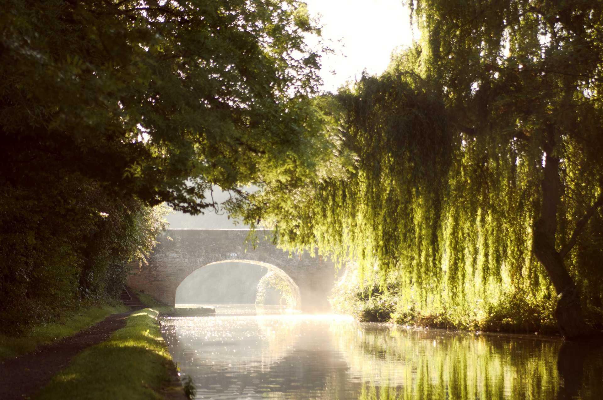 Michele Settembre - Fotografia in Inghilterra